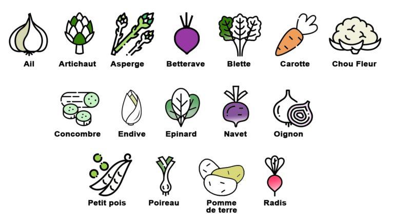 Avril: Quels légumes de saison consommer et pourquoi ?